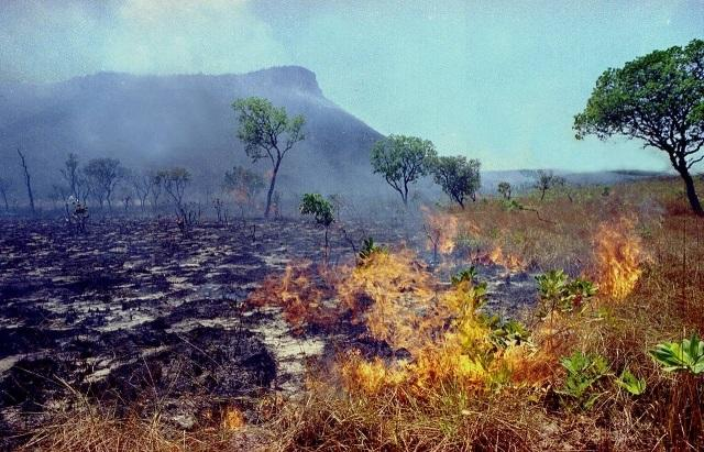 Incendie dans la Terre indigène Arariboia (Maranhão) en 2016. Photo COIAB